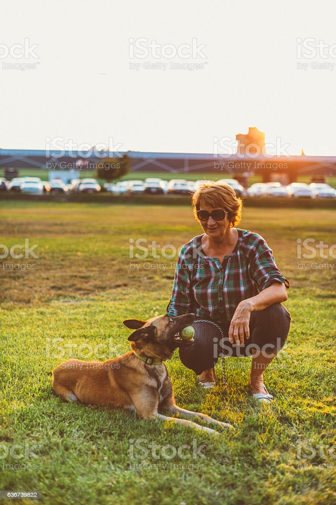Mature woman playing with her Malinois dog stock photo