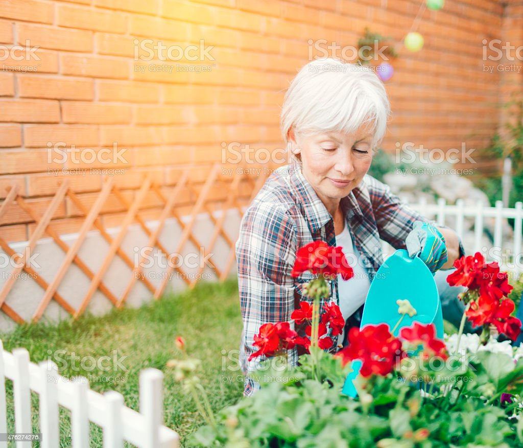 Mature Woman Watering Flowers In Her Backyard. stock photo
