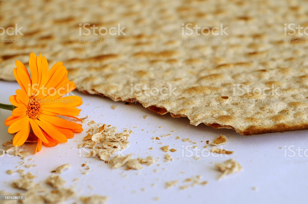 Matzoh with flower royalty-free stock photo