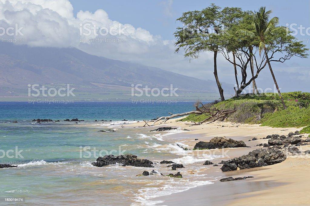 Maui Beach Landscape stock photo