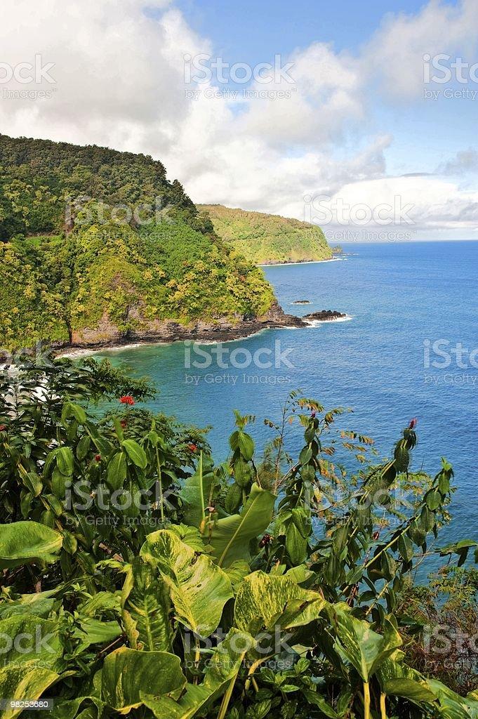Maui coastline from Hana Highway stock photo