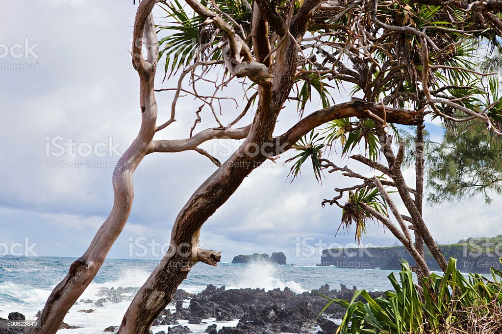 Maui Coastline stock photo