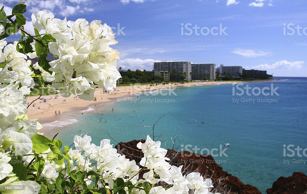 Maui Hawaii Beach ocean front resort and flowers stock photo