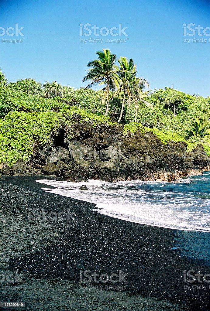Maui Hawaii Black Sand Beach and Palm Trees stock photo