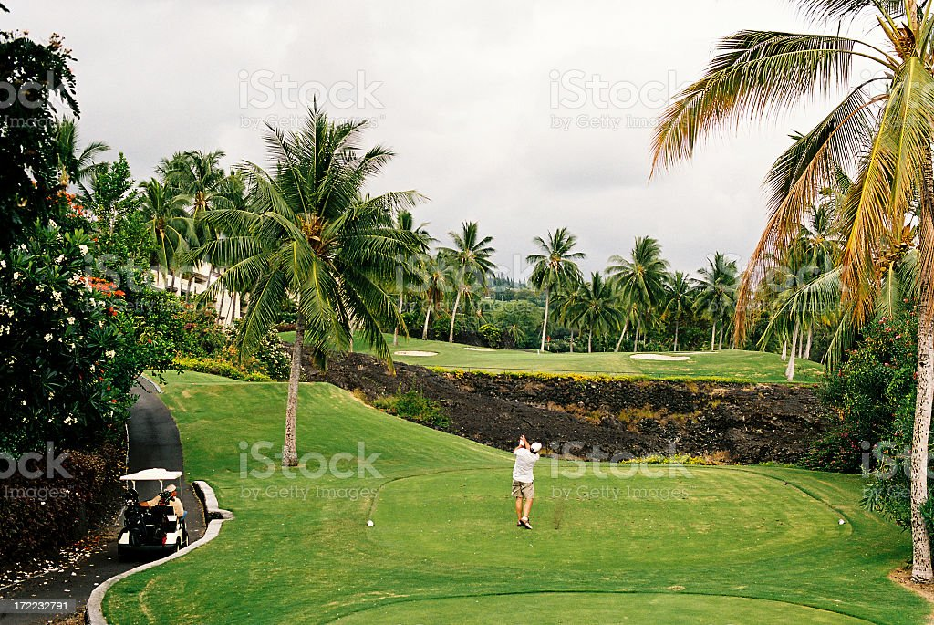 Maui Hawaii golfer and palm tree lined golf course stock photo