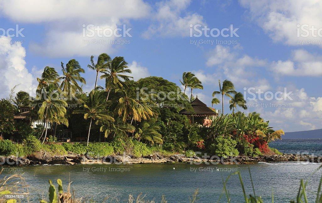 Maui Hawaii home and palm tree beach Pacific ocean scenic royalty-free stock photo
