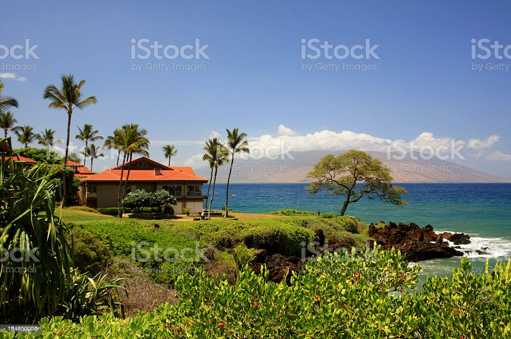Maui Hawaii Pacific ocean front home and palm trees stock photo