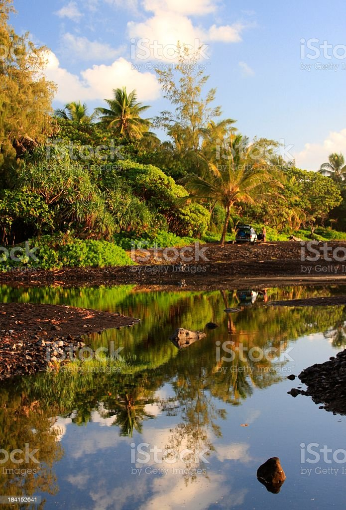 Maui Hawaii Pacific ocean front pond and palm trees stock photo