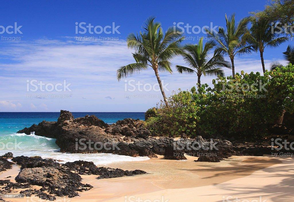 Maui Hawaii Pacific ocean palm tree beach scene royalty-free stock photo