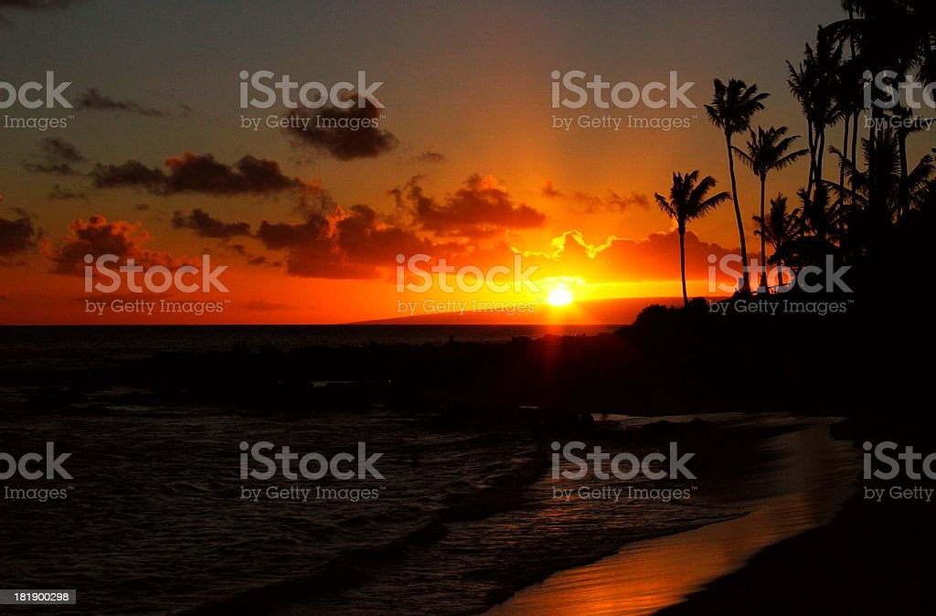 Maui Hawaii Pacific ocean palm tree sunset scenic royalty-free stock photo