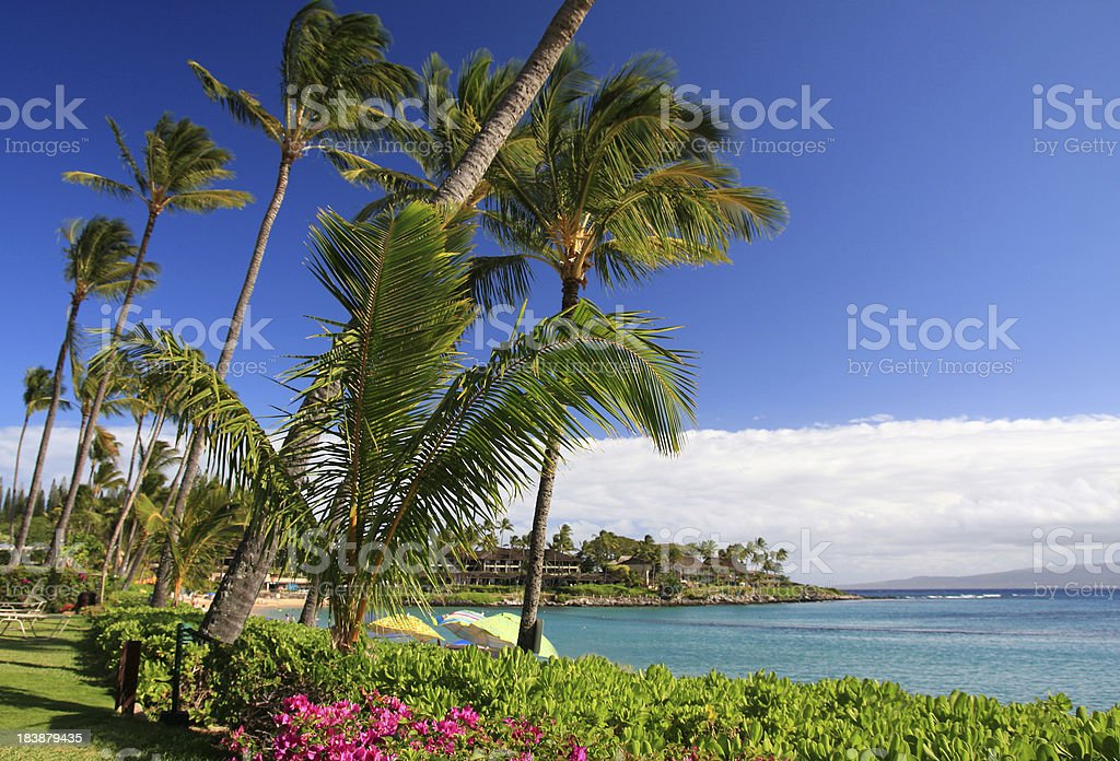 Maui Hawaii Pacific ocean resort hotel beach scene stock photo
