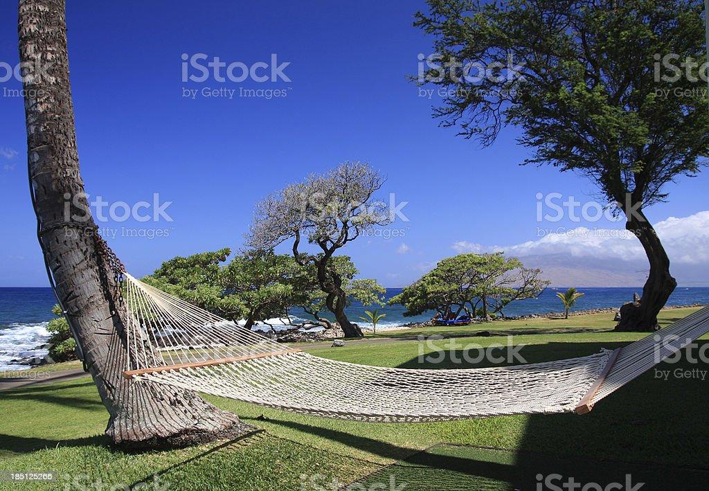 Maui Hawaii Pacific ocean resort hotel hammock stock photo