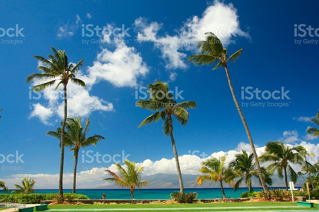 Maui Hawaii Pacific ocean resort hotel scene stock photo