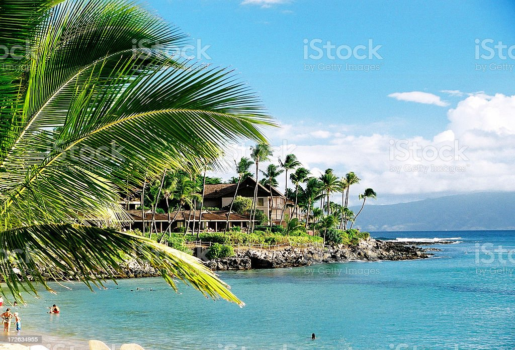 Maui Hawaii palm tree Pacific ocean resort hotel beach scenic royalty-free stock photo