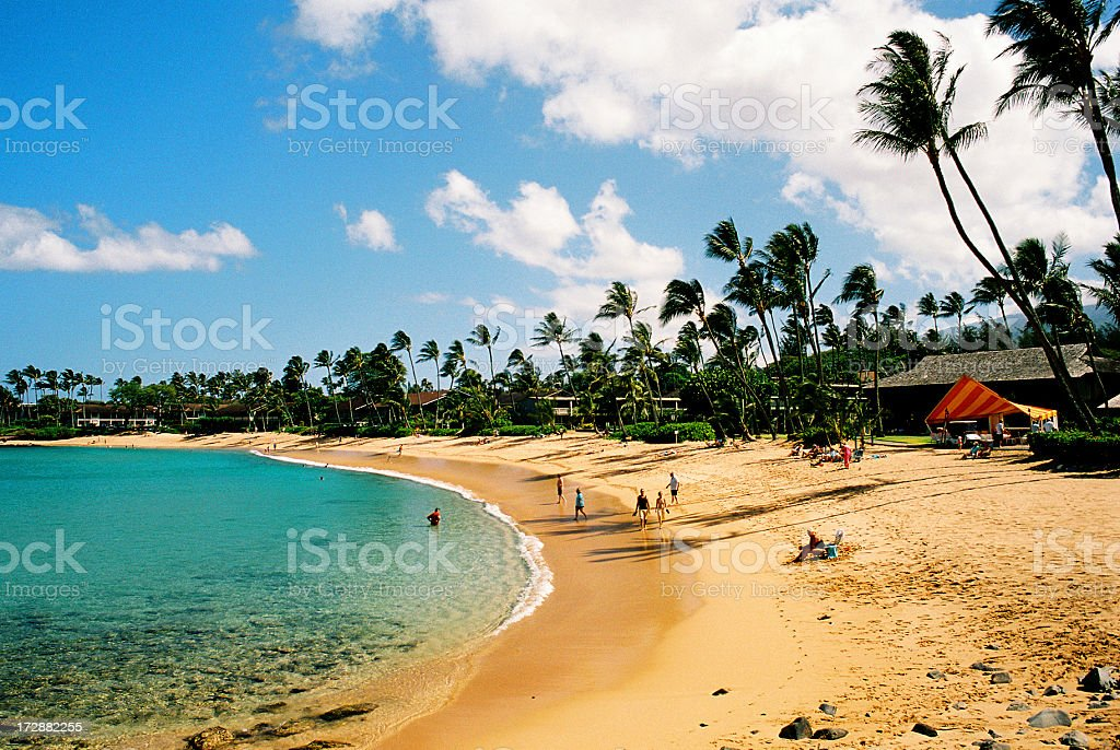 Maui Hawaii, Palm tree, Pacific ocean, resort hotel, beach scenic stock photo