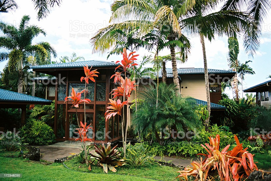 Maui Hawaii tropical mansion and palm tree garden stock photo