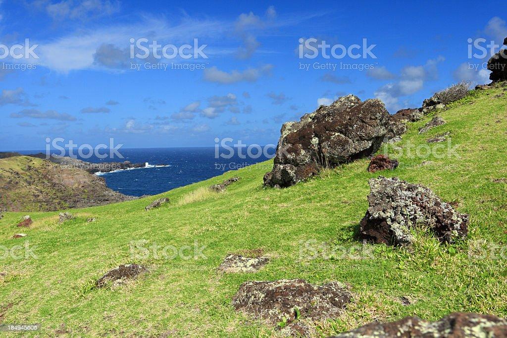Maui island landscape stock photo