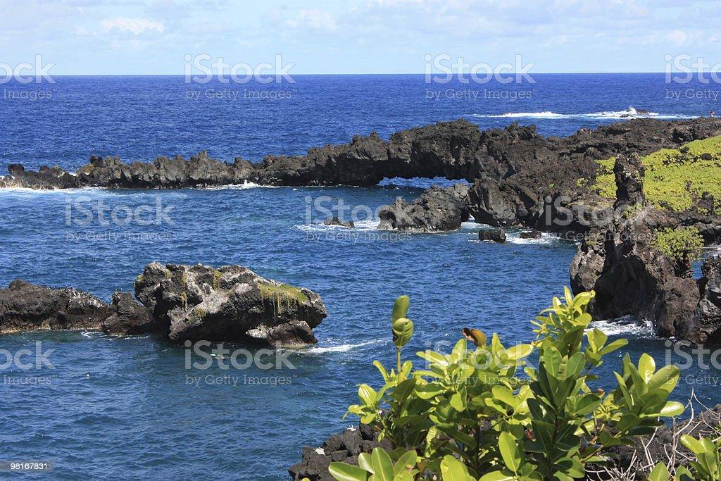 Maui Lavascape royalty-free stock photo
