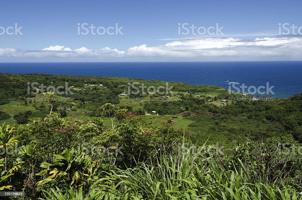 Maui stock photo