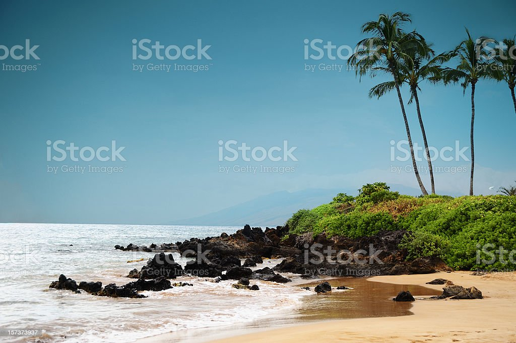 Maui Shore royalty-free stock photo