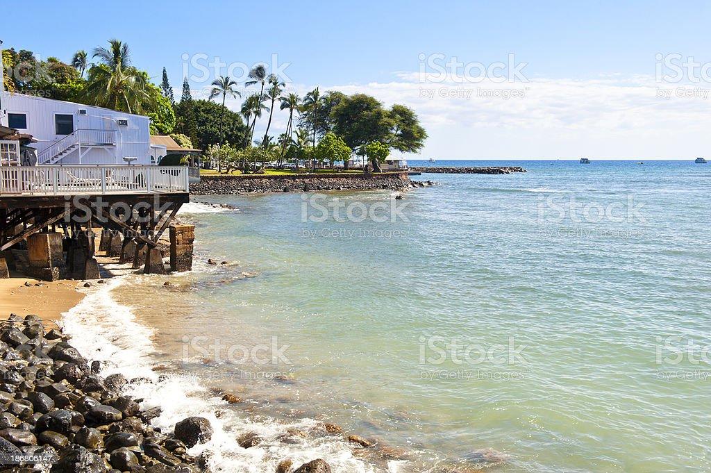 Maui Shore stock photo