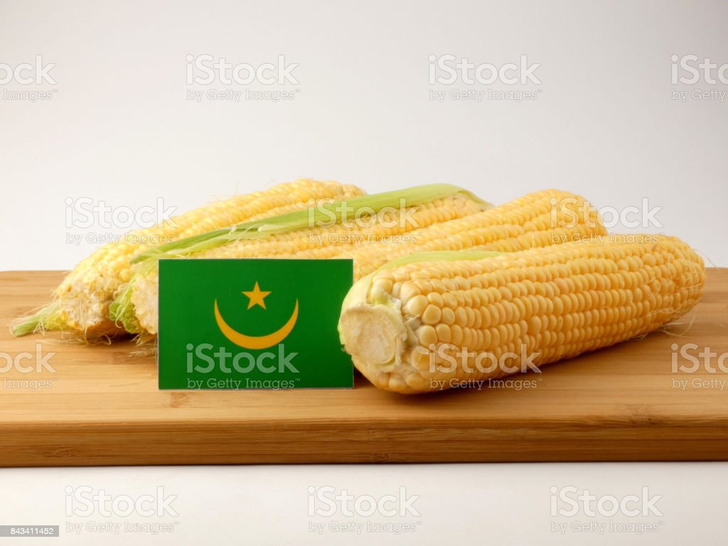 Mauritania flag on a wooden panel with corn isolated on a white background stock photo