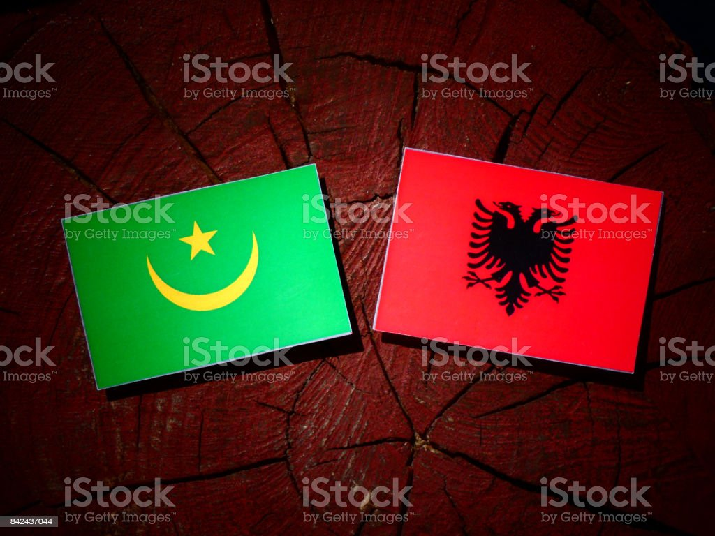 Mauritania flag with Albanian flag on a tree stump isolated stock photo