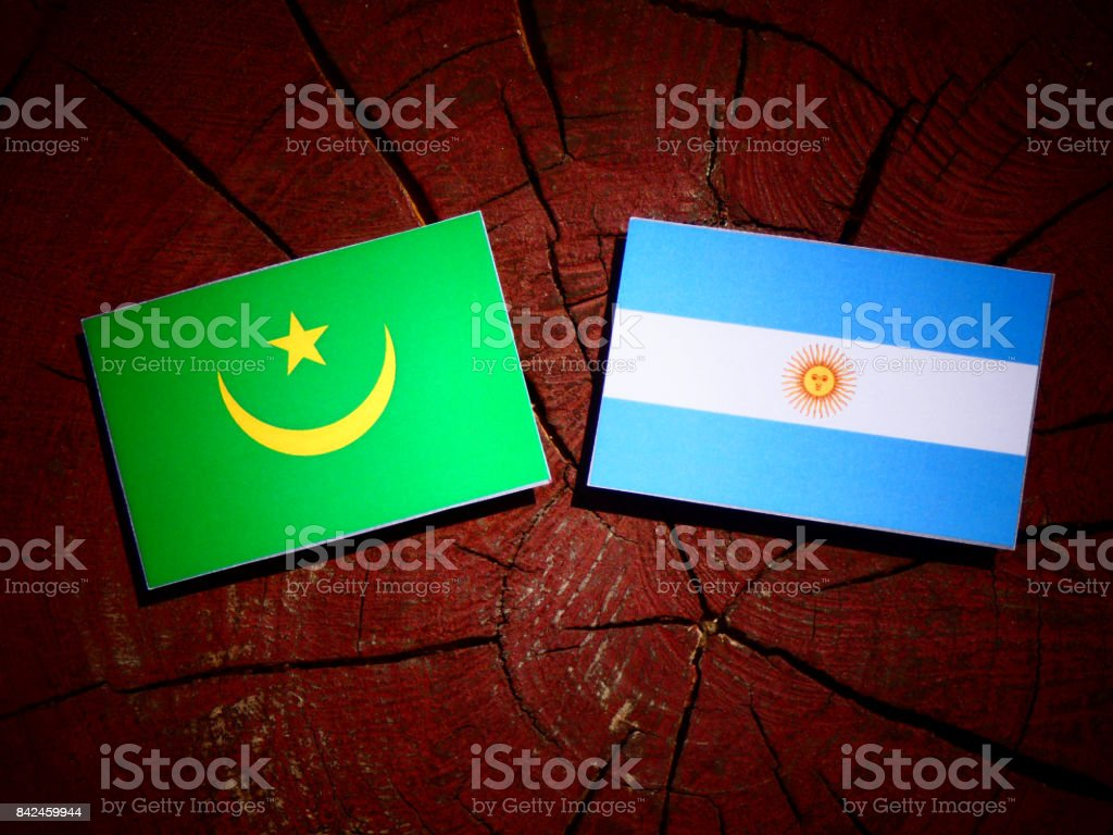 Mauritania flag with Argentinian flag on a tree stump isolated stock photo