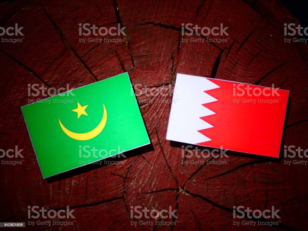 Mauritania flag with Bahraini flag on a tree stump isolated stock photo