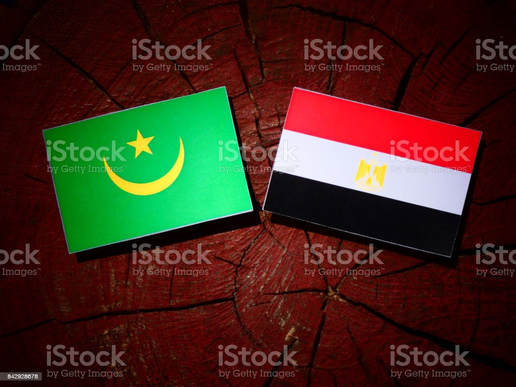 Mauritania flag with Egyptian flag on a tree stump isolated stock photo
