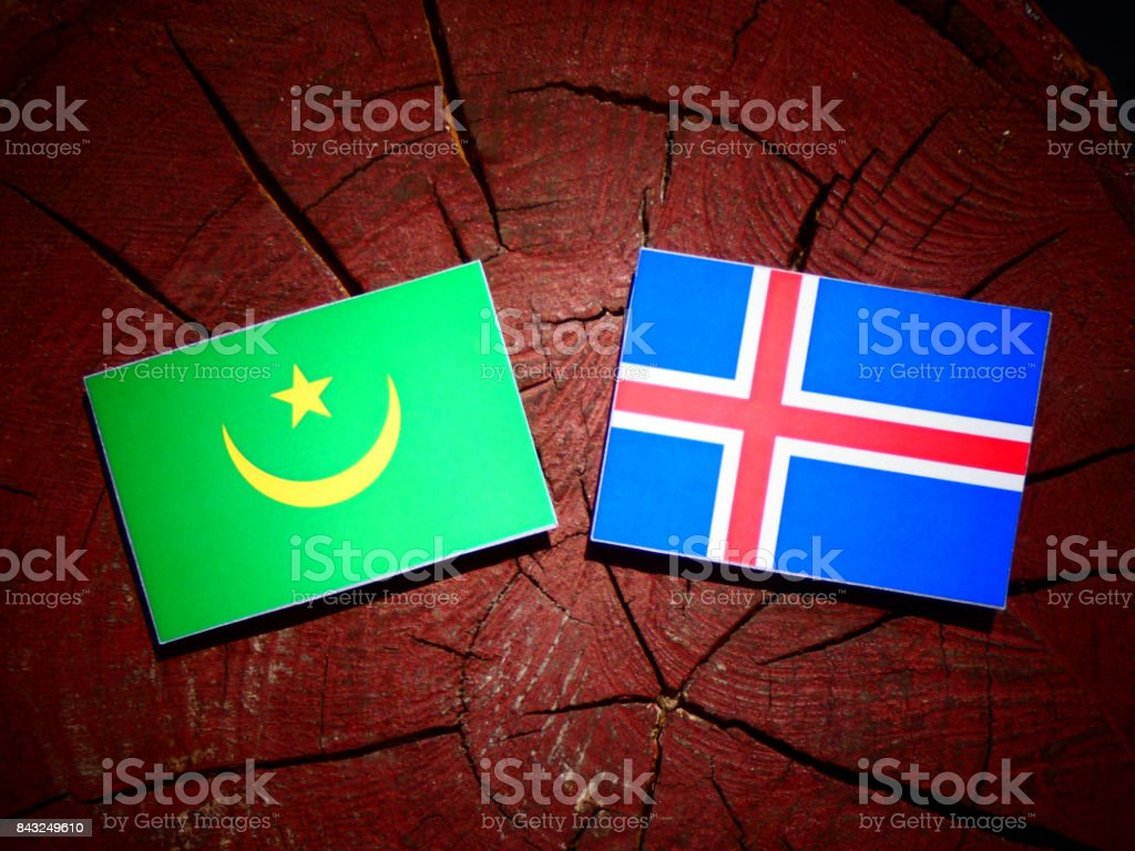 Mauritania flag with Icelandic flag on a tree stump isolated stock photo