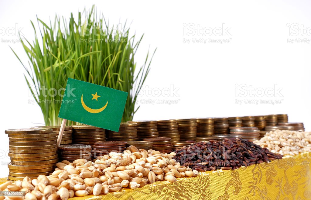 Mauritania flag with stack of coins and piles of wheat stock photo