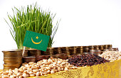Mauritania flag with stack of coins and piles of wheat