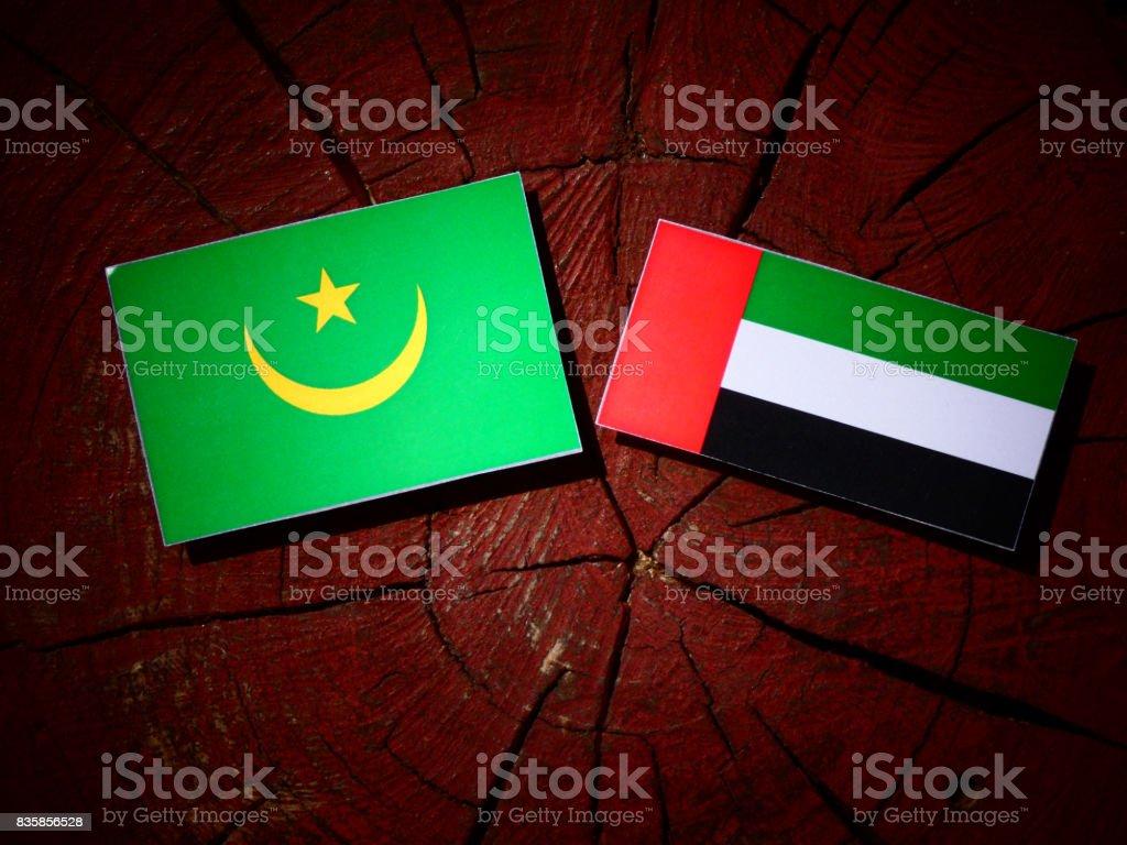 Mauritania flag with United Arab Emirates flag on a tree stump isolated stock photo