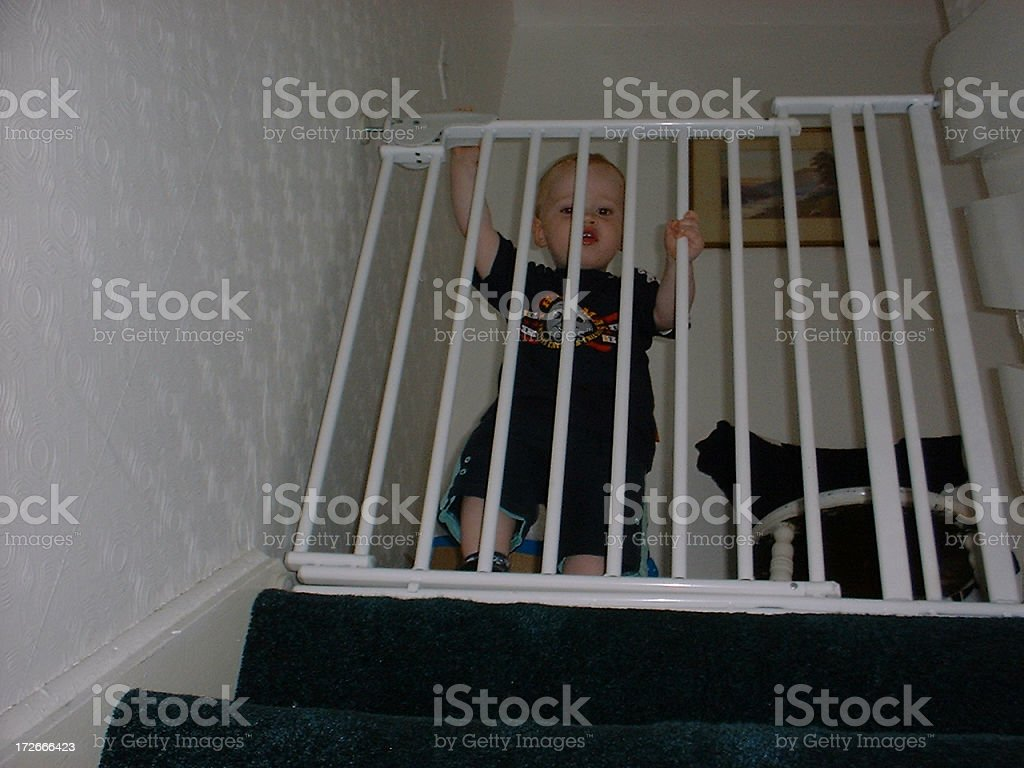 Max - Trapped stock photo