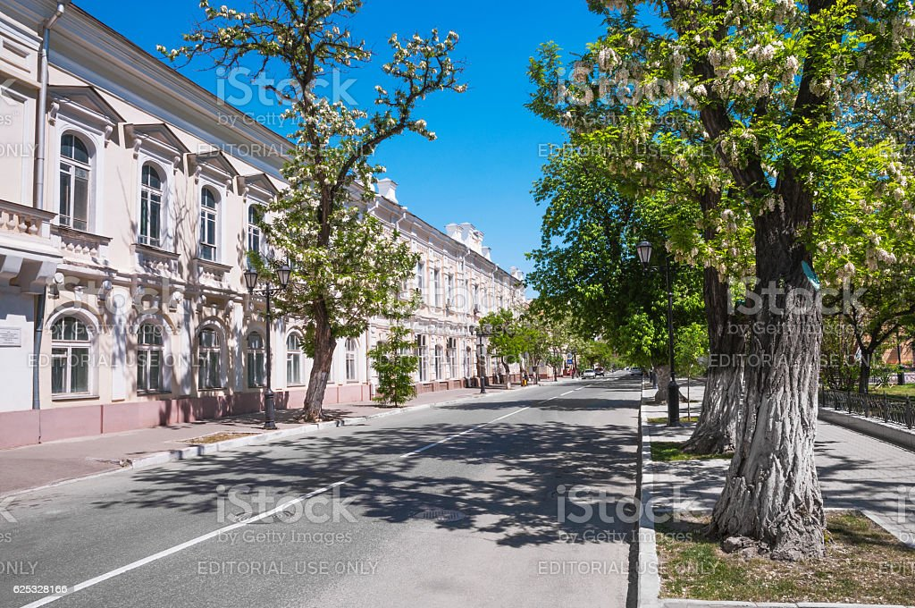 May . Acacia blossom in the streets of  southern city. stock photo
