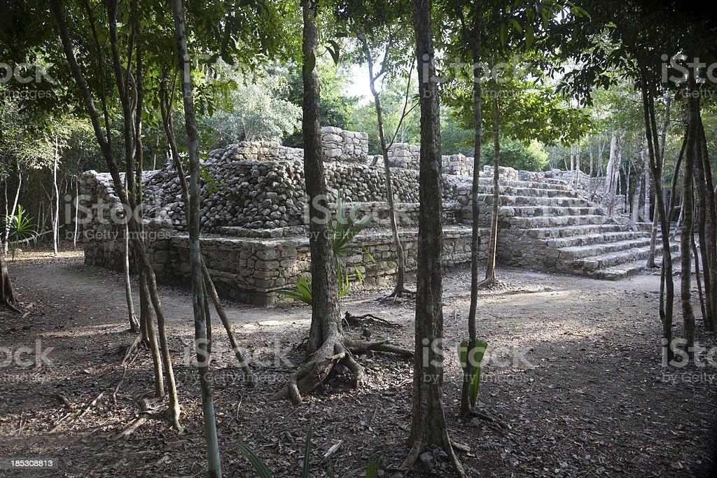 Maya ruin stock photo