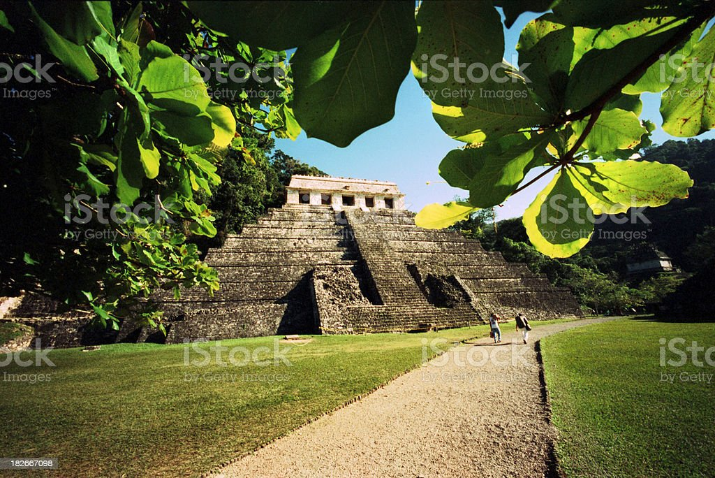 Maya Temple stock photo