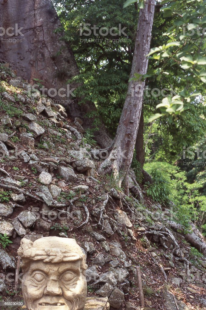 Mayan carved stone head below archeological mound covered with old growth trees Copan Ruins Honduras Central America stock photo