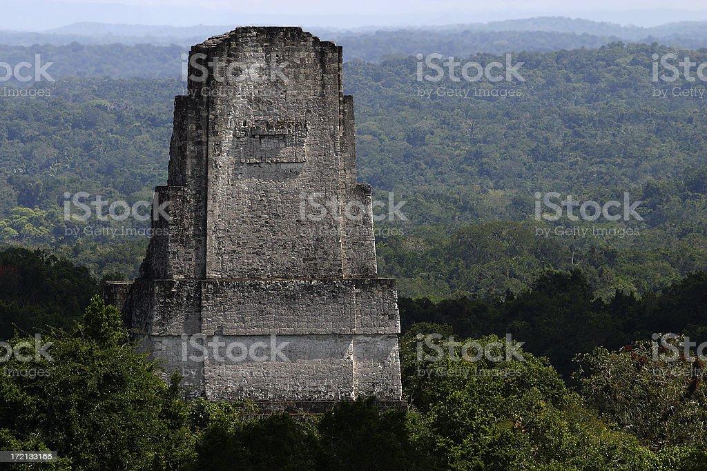 Mayan Monument, Jungle at Tikal royalty-free stock photo