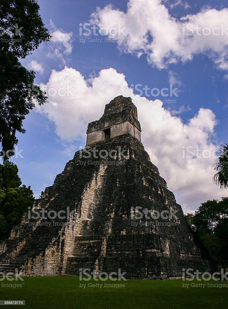 Mayan Pyramid at Tical Guatemala stock photo