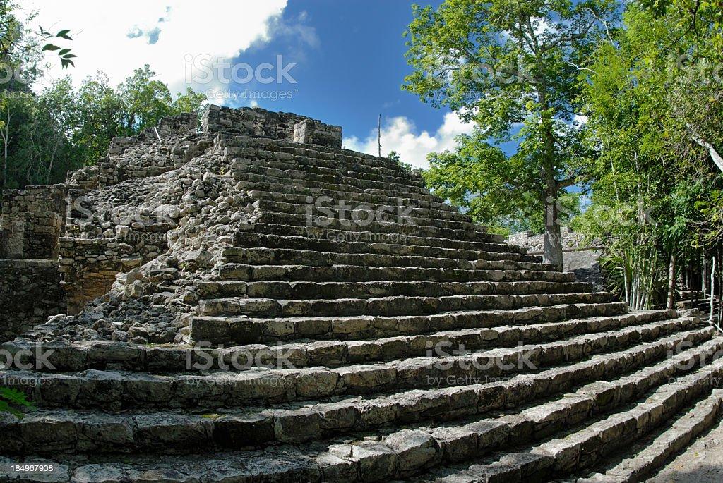 Mayan pyramid royalty-free stock photo