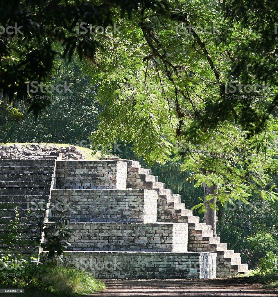 マヤ遺跡でコパン、ホンジュラス ロイヤリティフリーストックフォト