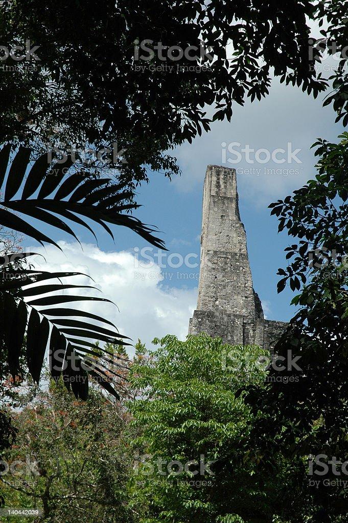 Mayan Ruins in Jungle royalty-free stock photo