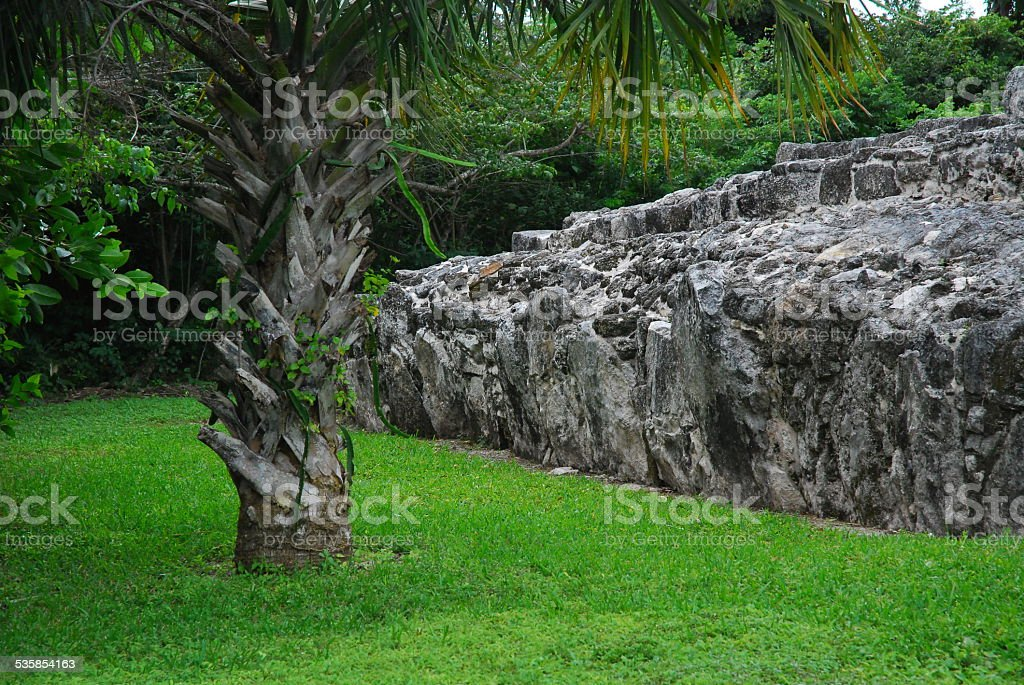 Mayan Ruins on Cozumel royalty-free stock photo
