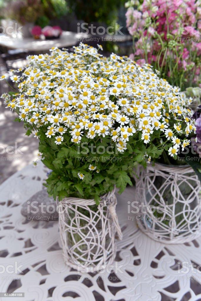 mazzo di fiori stock photo