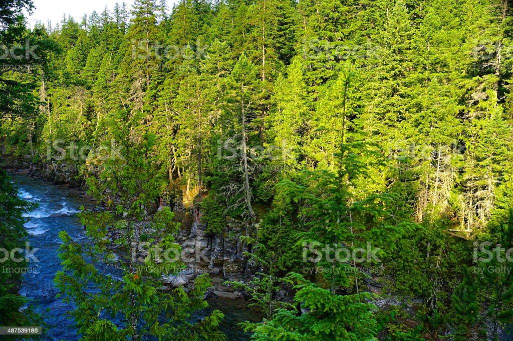 McDonald Creek Rare Angle stock photo