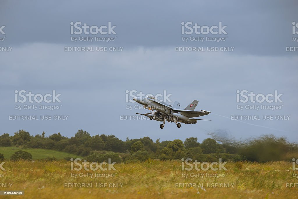 McDonnell Douglas F/A-18 Hornet at NATO Tiger Meet M2014 stock photo
