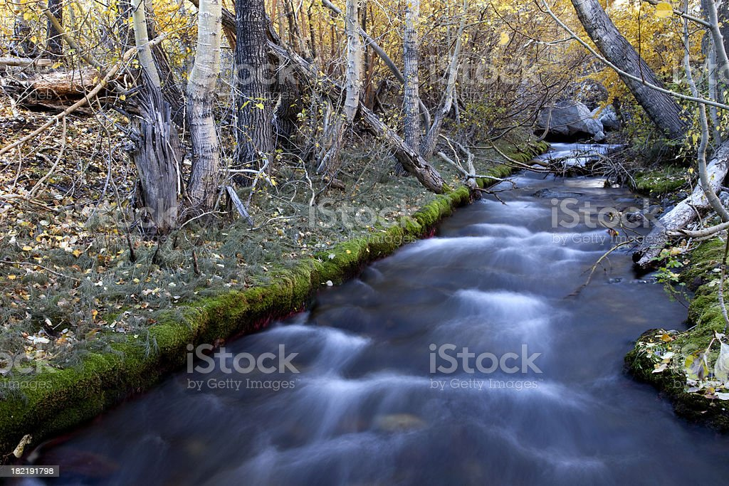 McGee Creek, Eastern Sierra Nevada Mountains stock photo