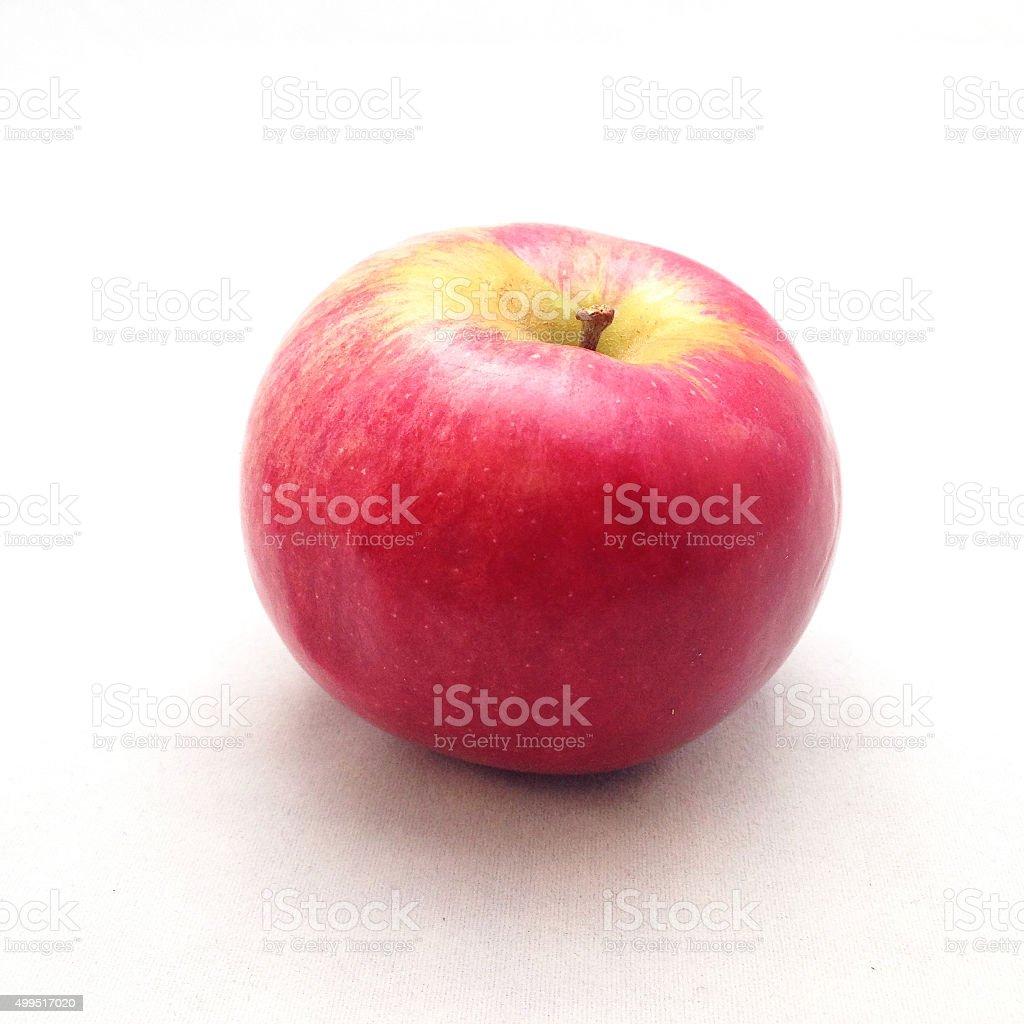 McIntosh apple stock photo